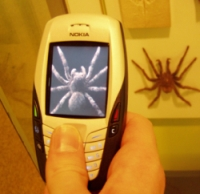 mobil-kamera.jpg