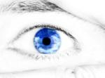 eyetracking.jpg